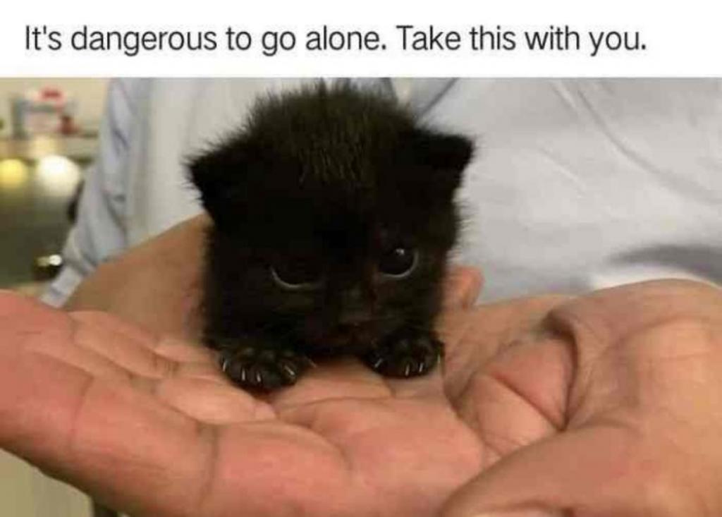 It S Dangerous To Go Alone Clmcdermid Net Tireless rocker goes back to golgari midrange in modern ep325. it s dangerous to go alone