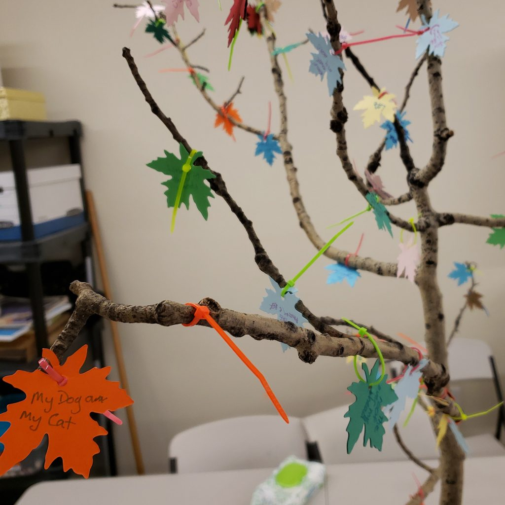 "Branches of a tree are shown with paper leaves attached by zip ties.  Things that people are grateful for are written on the leaves.  The nearest leaf is legible and says ""my cat and my dog."""